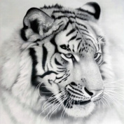 Hunpta DIY 5D Tiger Diamond Painting Cross Stitch Rhinestone Embroidery Home Decor