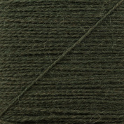 Regia 2 Ply Darning Yarn - 1994 Bottle Green