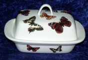 Butterfly butter dish - British butterflies on white porcelain butter dish decorated on lid and sides