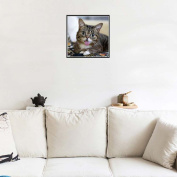 Bovake Cat & Butterfly DIY 5D Diamond Embroidery Painting Cross Stitch Home Decor Craft