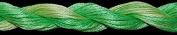 10461 Lime Twist - Threadworx Overdyed Floss