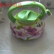 Enamel painting kettle, hot kettle,green