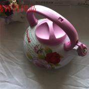 Enamel painting kettle, hot kettle,gules