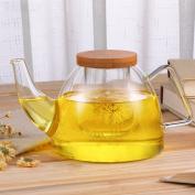 WYQLZ Creative Elephant Glass Filter Teapot Big Heat Resistant Kettle Health Pot 710ml