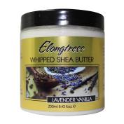Whipped Shea Butter By Elongtress