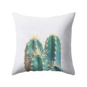 dragonaur Succulents Plants Pattern Pillow Case Cushion Cover Home Decor size Medium