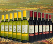 Selection of Wine Extremadura Earth Vegas Del Bodión 12.5º Red Wine 6 Bottles and 6 bottles of white wine and a Sommelier Wine Decanter included