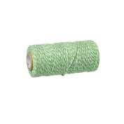 creafirm – Baker's Twine 100 m Spool String Style Light Green and White