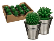 Cactus Candles in Metal Pot Favours
