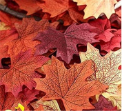 F-eshiat 120 Pcs Artificial Maple Leaf Multicolor for Wedding Party Christmas Halloween Decoratiat Photography Prop
