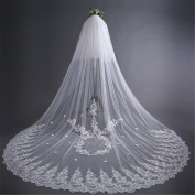 Wedding Veil 3m European Style Lace Long Section High Quality Soft Lace Ribbon Combs Wedding Accessories Veil , C