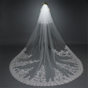 Wedding Veil 3 * 3m European Lace Big Tail With a Veil With a Comb Lace Bride Wedding Accessories Veil