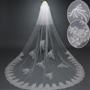 Wedding Veil 3m European Double Soft Lace With a Long Section Of The Long Tail Wedding Dress Veil