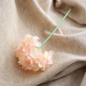 Artificial Flowers 10Pcs Emulation Flower Hydrangea Flowers And Bouquets Wedding Party Christmas Decorations, Champagne Colour