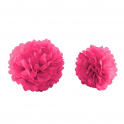 MultiWare 10Pcs Mixed Tissue Paper Pompoms Wedding Party Decoration Pom Poms Ball Rose