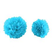 MultiWare 10Pcs Mixed Tissue Paper Pompoms Wedding Party Decoration Pom Poms Ball Sky Blue