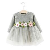 Toddler Baby Kid Girl Autumn Winter Cute Sweet Flower Long Sleeve Mini Tutu Princess Dress
