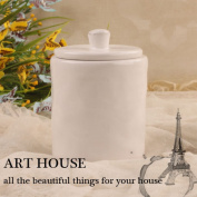 Ceramic Salt Box With Lid Spice Jar For Secure Strong Storage For Spices Herbs Seasoning More White Single