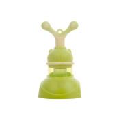 LOERO Fresh Food & Fruit Pacifier Baby Feeder Silicone Fresh Fruit Feeder.green purple orange . , snail fruit green