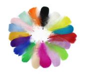 100PCS Mixed Colour 8cm-12cm(3.1-4.7 Inches) Fluffy Goose Feather for Decoration Craft Material/Kindergarten DIY Accessories