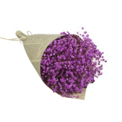 wuayi Gypsophila Natural Dried Flower Baby's Breath Home Decor Colourful Dried Flower Sky Star