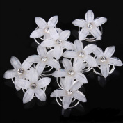 Slivercolor 10 pcs Girls Wedding Bridal Spiral Hair Clips hairpin Flower RhinestoneHairclips Bridal Wedding Hair Jewellery