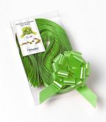 CONF. 50 Bows Rapid Ribbons Decorations – Apple Green – 31 mm – Graduation Events