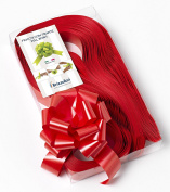 CONF. 50 Bows Rapid Ribbons – Red – 31 mm – Wedding Christmas Graduation