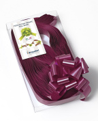 CONF. 50 Bows Rapid Ribbons – Bordeaux – 31 mm – Decorations Events Graduation