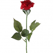 HAPPYQUDA 1pcs Artificial Latex Touch Red Rose For wedding Party Home Design Bouquet Decor