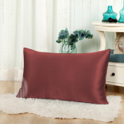 THXSILK 19mm Mulberry Silk Pillowcase for Baby Toddler Child Travel 30x40cm, Deep Red