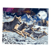 Homyl Unframed DIY Oil Painting for Adults Kids Paint By Number Kit Digital Oil Painting 16X20 Inches - Wolves, 40x50cm