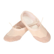 Vococal Classic Canvas Ballet Slippers Dance Shoes Yoga Shoes for Women Girls Children Adults Skin Colour Size EU 38/US 7.5/UK 5.5