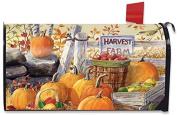 Harvest Farm Fall Magnetic Mailbox Cover Pumpkins Apples Standard