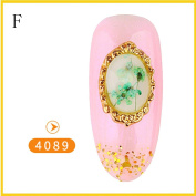 NXDWJ 5PC Mixed Dried Flowers Shell Nail Art DIY Decoration Preserved Flower Decoration Decor Nail Art