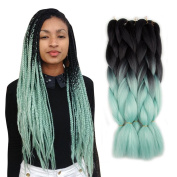 5 Pieces 2 Tone Ombre Braiding Hair Crochet Braids Synthetic Hair Extensions 60cm