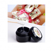 Nail Art Nail Glue, Faluse Nail Tips Professional Acrylic Beauty Rhinestones Mini Glue