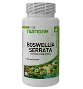 Boswellia Serrata X 0.100 kg