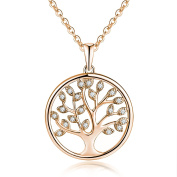 YH Tree of Life Necklace,925 Sterling Silver Yggdrasil Celtic Family Tree of Life Pendant Necklace,Jewellery for Women