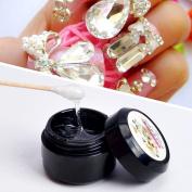 Hunpta Nail Art Faluse Nail Tips Professional Acrylic Beauty Rhinestones Mini Glue