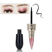 Professional 2 in 1 Eyes Mekeup Kit Waterproof Long Lasting Shimmer Shine Eye Shadow Stick Cosmetic Eyeliner #4
