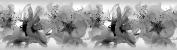AG Design 0.14 x 5 m Self Adhesive Border, 500 x 14 cm, Foil, Colourful Flowers