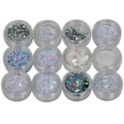 TRIXES 12PC Winter Theme Shimmer Chunky Glitter Collection for Beauty Face Body and Festive Hand Craft