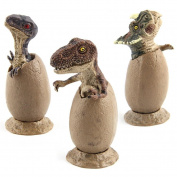 Education Toys, Toamen 3pcs Novelty Magic Crack Easter Dinosaur Hatching Eggs Toy