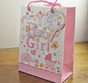 Medium & Large 3D Baby Girl Gift Bags & Tag!!