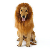 Pet Dog Costume Lion Mane Wig OUTAD Christmas Halloween Clothes Festival Fancy Dress up