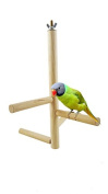 Gold butterfly@ Pet Parrot Raw Wood Fork Stand Rack Toy Branch Perches for Bird Cage Hot