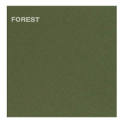 Canford Paper 20.5X30.5 Forest