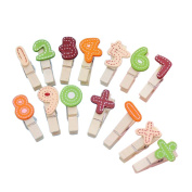 Qinlee 12pcs Wooden Photo Clips Clothes Paper Mini Colourful Number Wooden Pegs Clothespins Clips for Hanging Photos Art Craft DIY Picture and 1 Metre Jute Hemp Cord Ropes