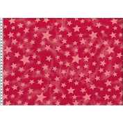 Denim Stars Red 1,40 m wide